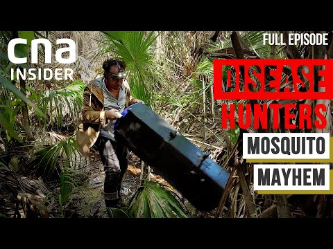 Mosquito Mayhem: A Bloody Fight Against Mosquito-Bourne Diseases   Disease Hunters   Part 3/3