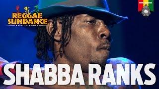 Shabba Ranks Live at Reggae Sundance 2016