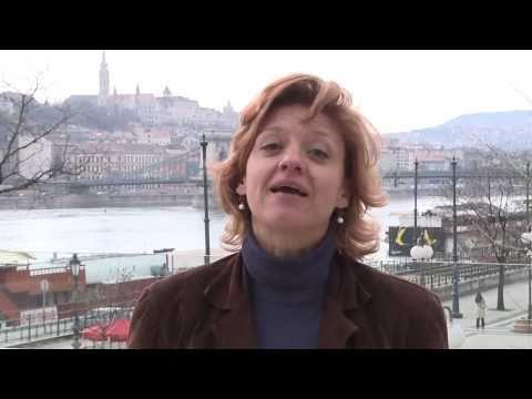 14° Consiglio del Partito Verde Europeo a Budapest. Media law in Ungheria