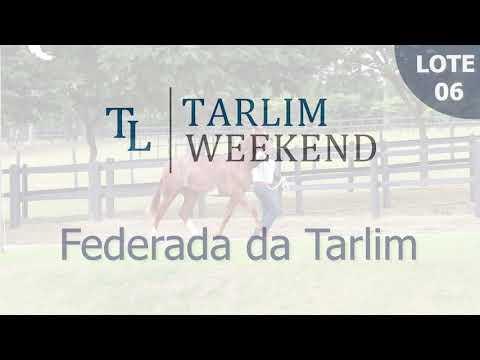 Lote 06 - Federada da Tarlim (6º Leilão Tarlim)