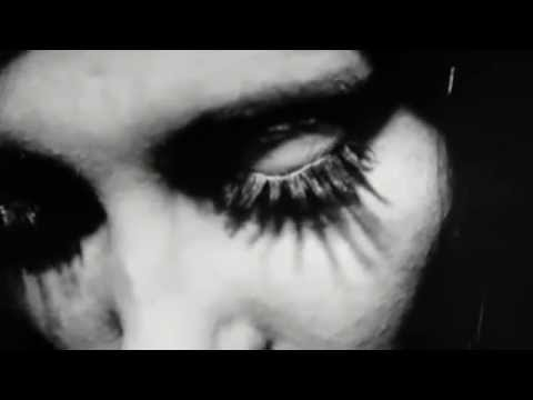 Vincent gallo brown daisies
