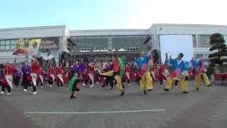 「総踊り・がらぢう」 2013 フェスティビタスナタリス
