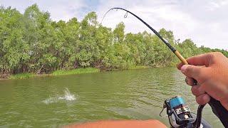 Да СКОЛЬКО же РЫБЫ в этом ЗАЛИВЕ!? Рыбалка на Щуку и Окуня в Июле со спиннингом