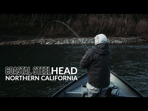 Northern California STEELHEAD Fly Fishing- AC Fly Fishing