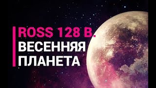 Ross 128 b. Весенняя планета