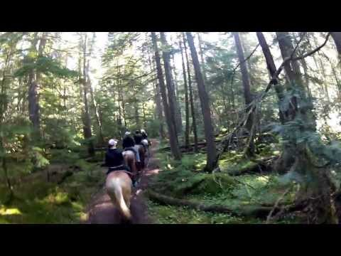 Horseback trail ride through Glacier National Park! August 14, 2013