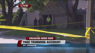 St. Francis man dies after tree trimming accident
