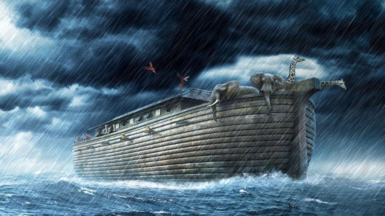 Image result for noag ship