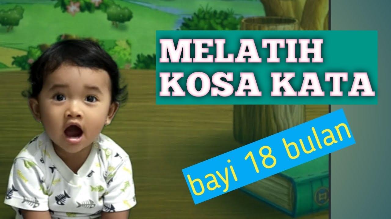 PERMAINAN ANAK 1,5 TAHUN   Pengenalan Kosa Kata pada Anak 18 Bulan   YouTube