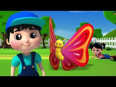 kupu-kupu-lagu- -lagu-untuk-anak-anak- -sajak-kanak-kanak- -butterfly-song- -farmees-indonesia