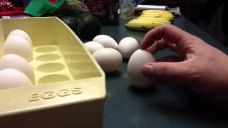 Balancing Eggs for Boredom