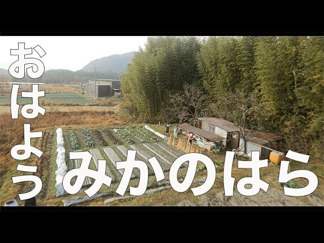 【みかのはら / 京都 / 173】「おはよう!」空撮・たごてるよし_Aerial_TAGO channel