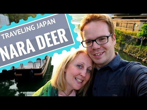 Bean In Japan: Oh Deer, Monkey Business