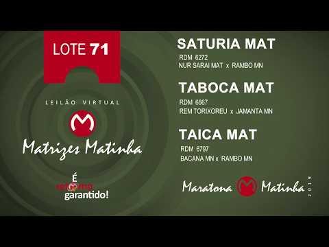 LOTE 71 Matrizes Matinha 2019