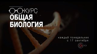 Станислав Дробышевский: