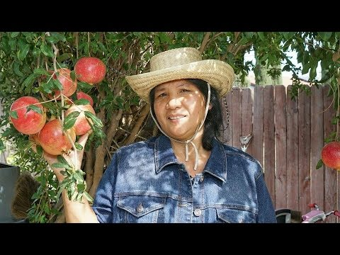 Moms Cambodian Garden 2015