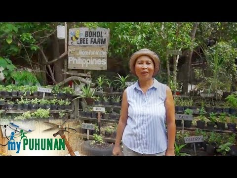 My Puhunan: Vicky Sandidge  of Bohol Bee Farm