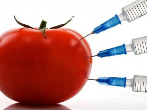 #015 - Freedom from fake foods - Talk about GMO and Organic foods