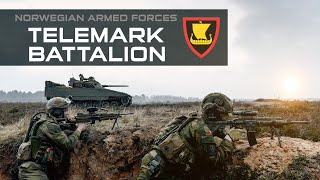 Norwegian Armed Forces: Telemark battalion