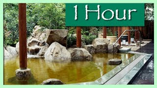 1 HOUR RELAXING JAPANESE KOTO SPA MUSIC FOR STUDYING AND MEDITATION