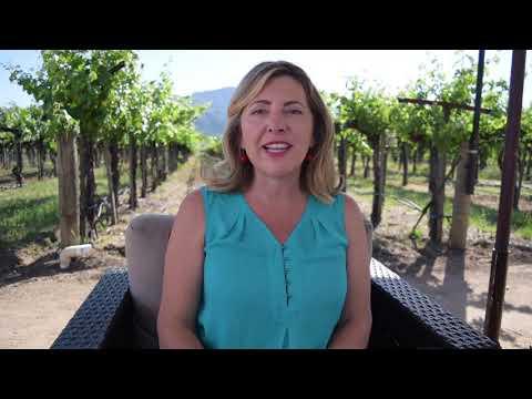 Download Sara Fowler Peju Vino Lingo Video DBADA