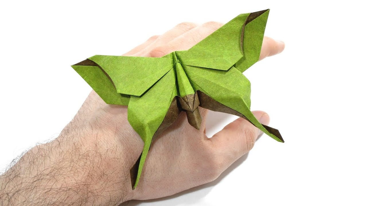 Origami Dollar bill Buttefly tutorial (Michael LaFosse) 折り紙 蝶 ... | 720x1280