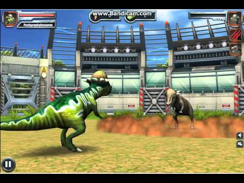 Jurassic Park Builder: Pachycephalosaurus [Lv 40 Battle]