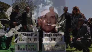 Memorial Park Dove Rentals 7l4 622-4095