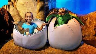 Kids at the Aquarium Family Actividades divertidas para niños Ocean Funny video