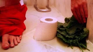 В поисках чистой воды: Туалетная бумага vs. Лопухи!(, 2011-06-10T00:14:23.000Z)