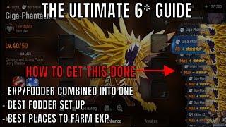 The Ultimate 6 Guide Best Places To Farm Exp Best Fodder Set Up Epic Seven Youtube