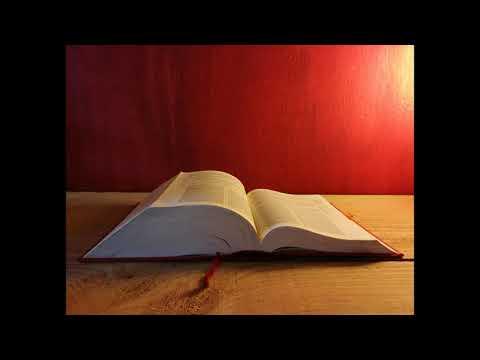 letture-e-vangelo-del-giorno---lunedì-11-novembre-2019-(audio-letture-della-parola)