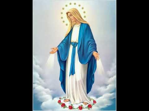 Hymn Hail to You O Mary English  Anba Abakir مديح السلام لكي يا عدرا انجليزي   الأنبا أباكيرMp3Conve