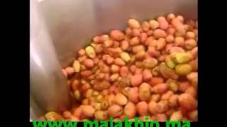 Barbary Fig Oil Extraction