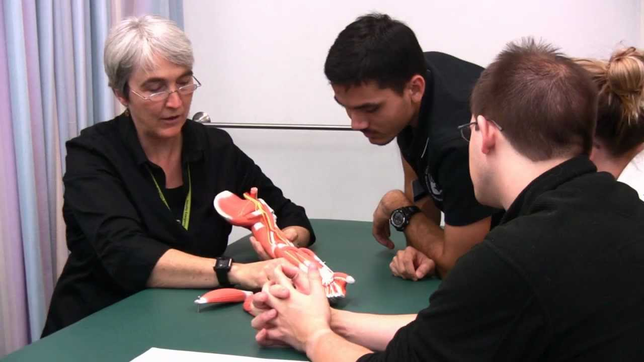 Massage Therapy - Youtube-4270