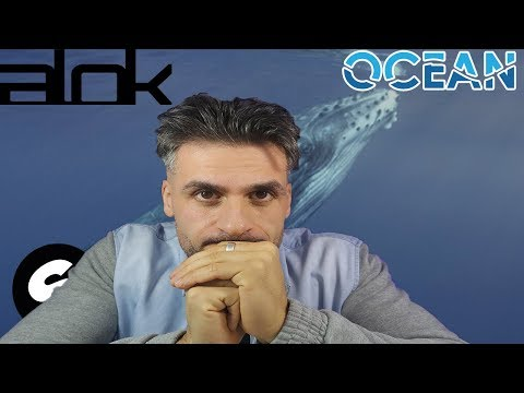 PORTUGA REAGINDO - ALOK  ZEEBA AND IRO - OCEAN EMOCIONANTE