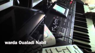 عزف و تقسيم روعة لمقام رصد صولو ميستر ساكس حكايتي مع الزمان Oualadi Nabil Korg pa3x