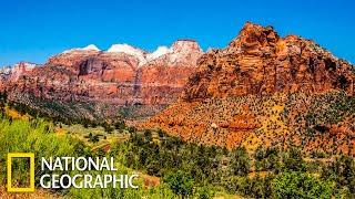 Дикий Запад. Звериный вестерн  | (National Geographic)