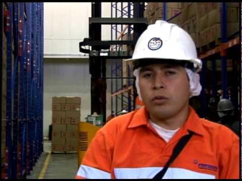 Caso de Exito Tecnologia para Logistica WMS de RedPrairie en Pepsico Fritolay por Netlogistik
