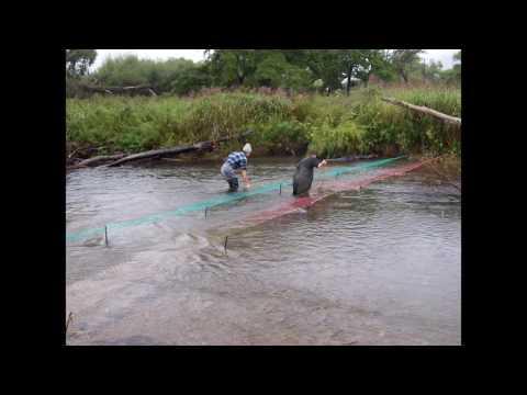 Рыболовный форум rybolovee