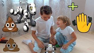 Крутецкая собака робот Зуммер | dog robot