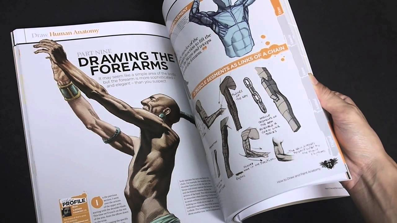 The Complete Guide: How to Draw and Paint Anatomy - YouTube