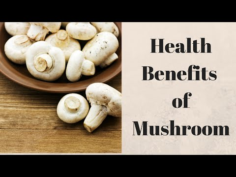6 Health Benefits of Mushroom for Skin, Hair & Health
