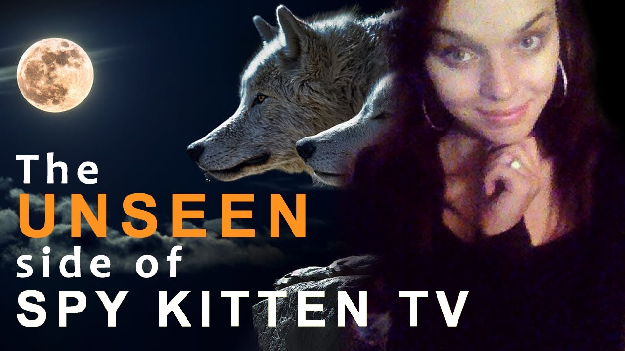 Finding Spy Kitten TV | The Unseen side of Spy Kitten TV | Exposed?