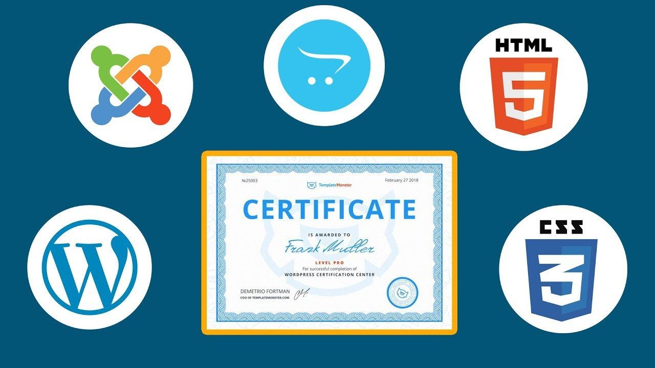 Free Web Design Certification Center By Templatemonster Youtube