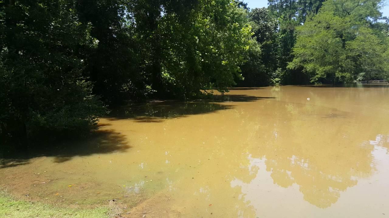 River Plantation Flooding May 2016 - YouTube