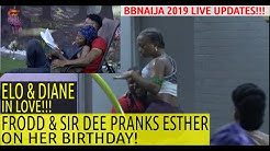 BBNaija 2019 LIVE UPDATES | FRODD AND SIR DEE PRANK ESTHER ON HER BIRTHDAY | DIANE AND ELO IN LOVE