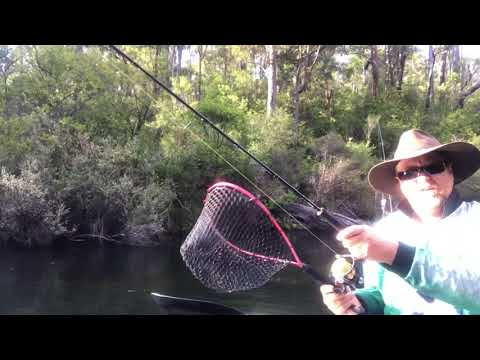 Camping And Fishing At Gelcoat Rapids, Collie River