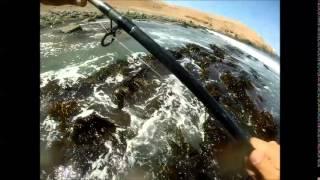Pesca de corvinas y lenguados en Chile, historia de amor  y de respeto al mar.