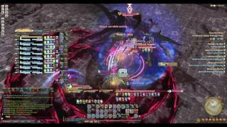 Nidhogg Extreme Clear WHM POV FFXIV [Gilgamesh Server 3rd?]